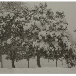 Winterday_layout_03